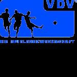 VDV Logo